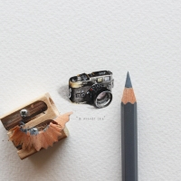 Lorraine Loots' Postcards for Ants